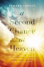 A Second Chance At Heaven My Surprising Journey Through Hell, Heaven, And Back To Life (Book) by Tamara Laroux